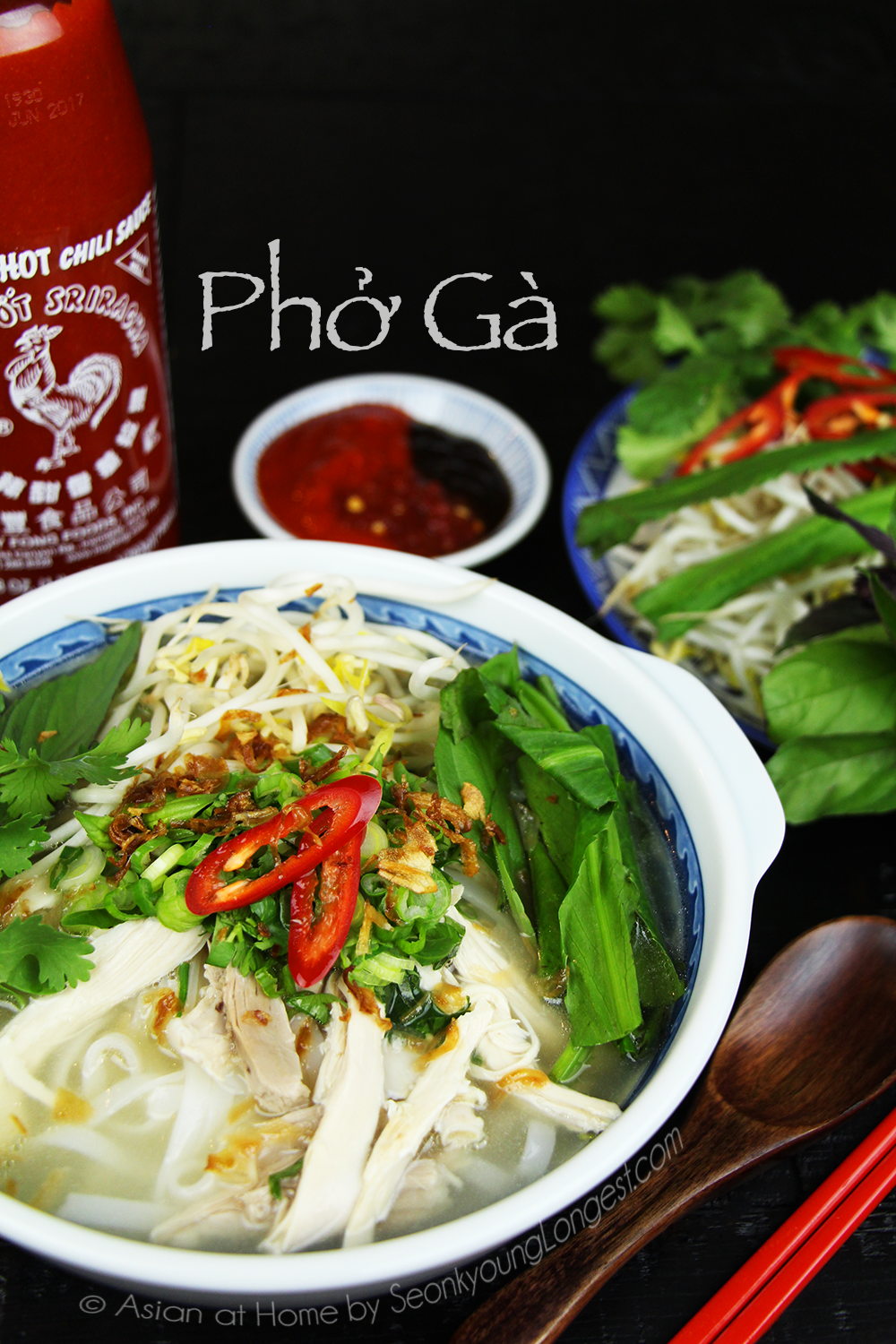 Chicken Pho Recipe & Video (Phở Gà) - Seonkyoung Longest