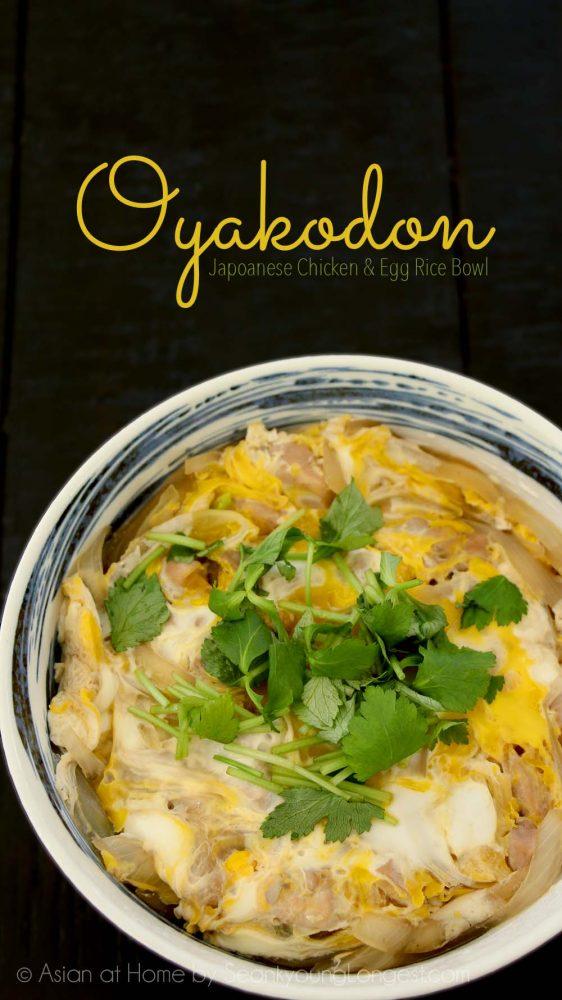 Oyakodon Japanese Chicken Egg Rice Bowl Recipe Video